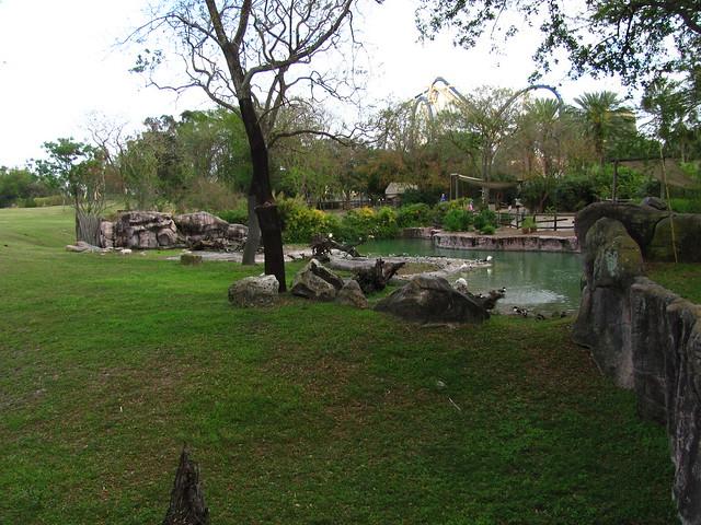 Busch Gardens Tampa 189 Flickr Photo Sharing
