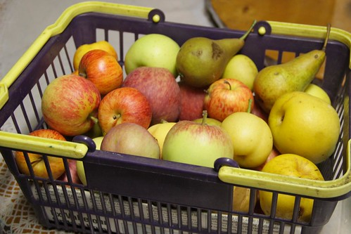 Various Apple & Pear Harvested