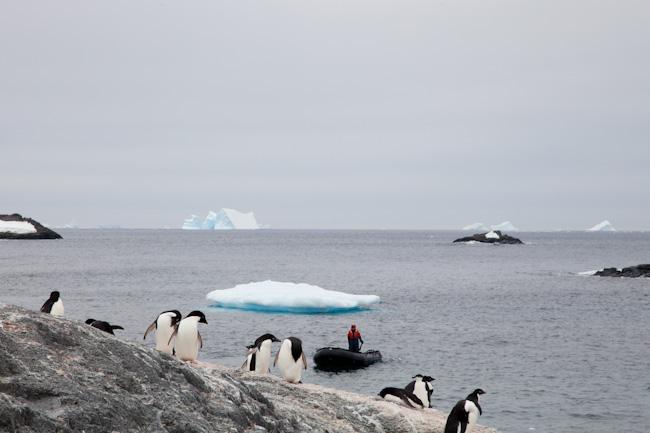 antarctica-blog-36