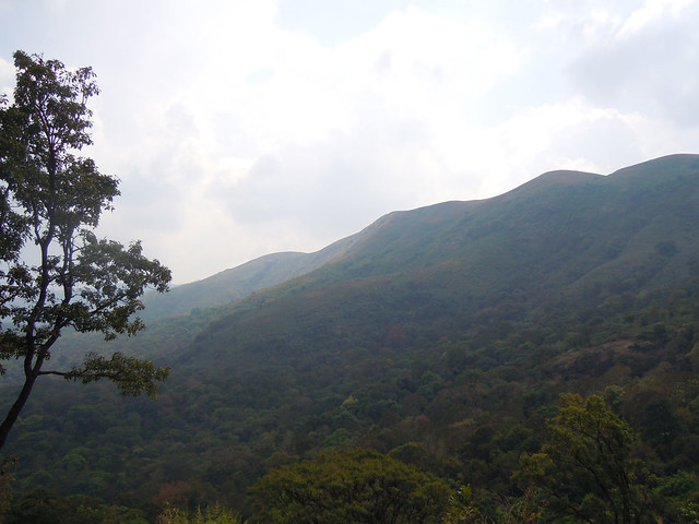Brahmagiri_Trek_Views1