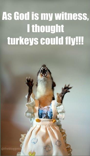 juanita_turkey
