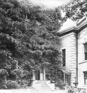 straushouse