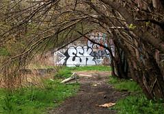 Abandoned Coal Pier 11