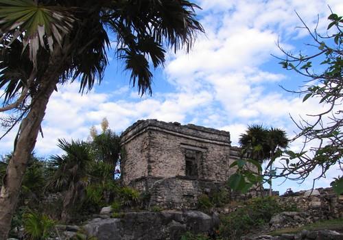 Tulum Quintana Roo Mexico  1778pr