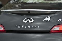 Infinite Bull