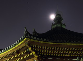 奈良 興福寺 四番   /  Night View of Koufukuji Temple in Nara City #4