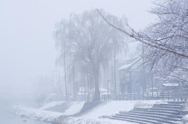 古利根雪景色