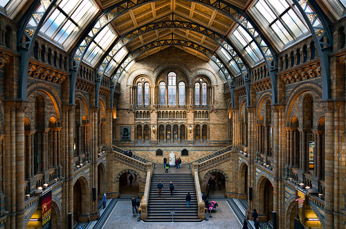 Central Hall, Natural History Museum by ajnabeee