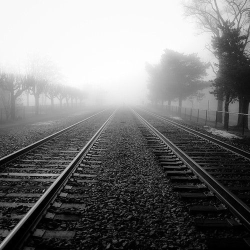 railroad trees light blackandwhite bw mist monochrome fog square blackwhite traintracks foggy rails phonesnapshot noahbw