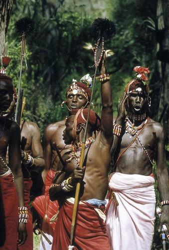 """'Samburu Warriors' oil on board 35"""" x 23½"""