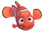Nemo - Inspiration
