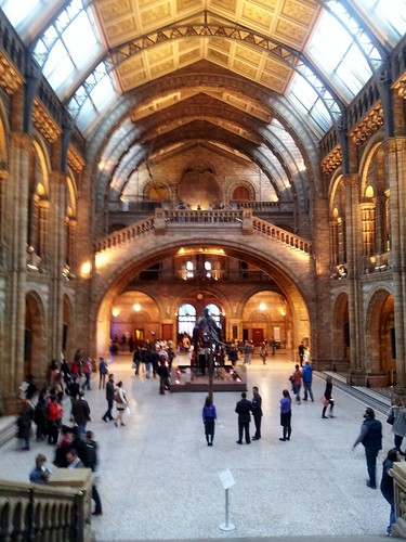 natural history museum by Moonez