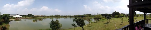 埤塘全景照