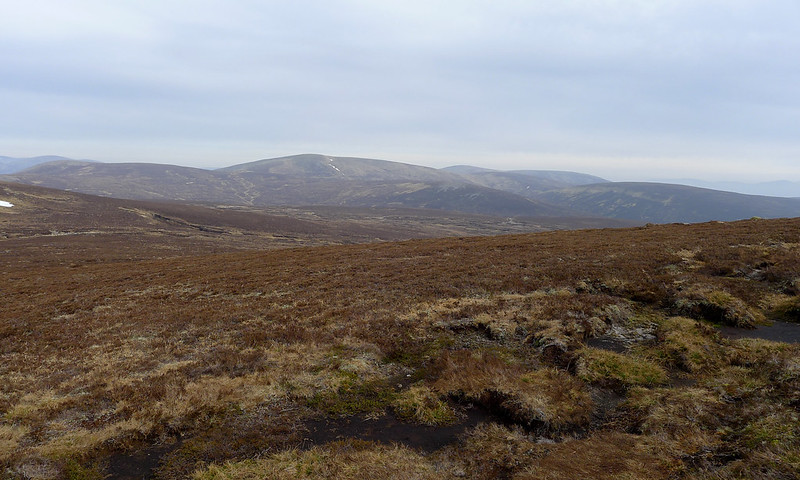 Boggy land on the Ring of Tarf