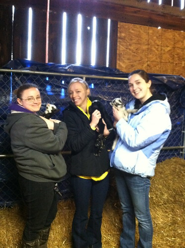 Shelby and Friends with the baby goats