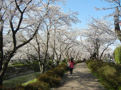 2012年春・初夏_12