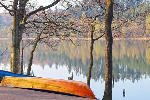 trees lake reflection boat sø silkeborg almindsø søhøjlandet