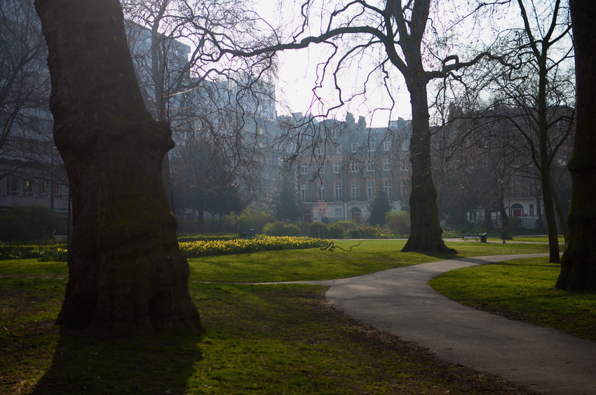 russell square morning mist
