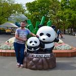 Nik and the pandas