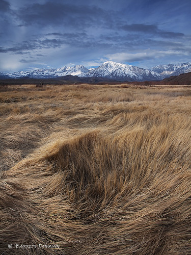 Owens Valley Winter