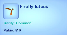 Firefly Luteus
