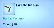 Firefly Luteus