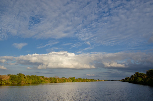 Caloosahatchee River Ecoscape by Carlton Ward Photography