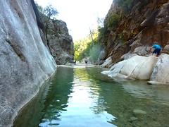 Partie aval du Fiumiceddi inf. : la vasque avec la gargouille