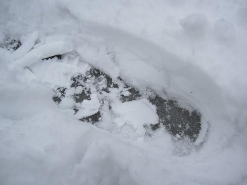 雪の下は氷   2012.2.14 by Poran111