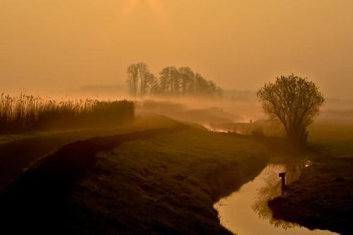 sky mist dutch fog landscape polder alblasserwaard alblasserdam