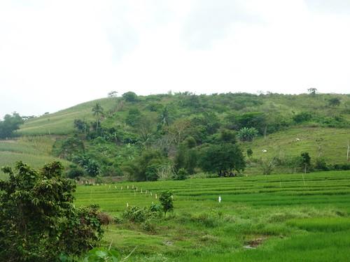 Luzon-Tuguegarao-Santa Ana (112)
