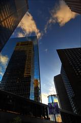 Buildings in Houston downtown #10