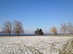 Murten Winter 2012