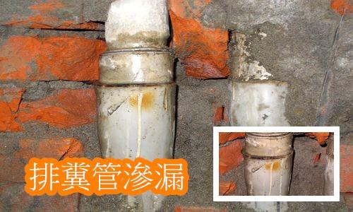 4排糞管漏水
