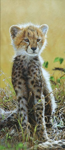 "'Cheetah Cub' oil on board 17"" x 7¾"