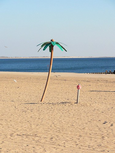 Imitation Palm Tree on Coney Island Beach