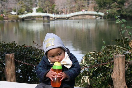 2012年3月11日 薬師池公園
