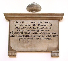 Ann Maria Shapland