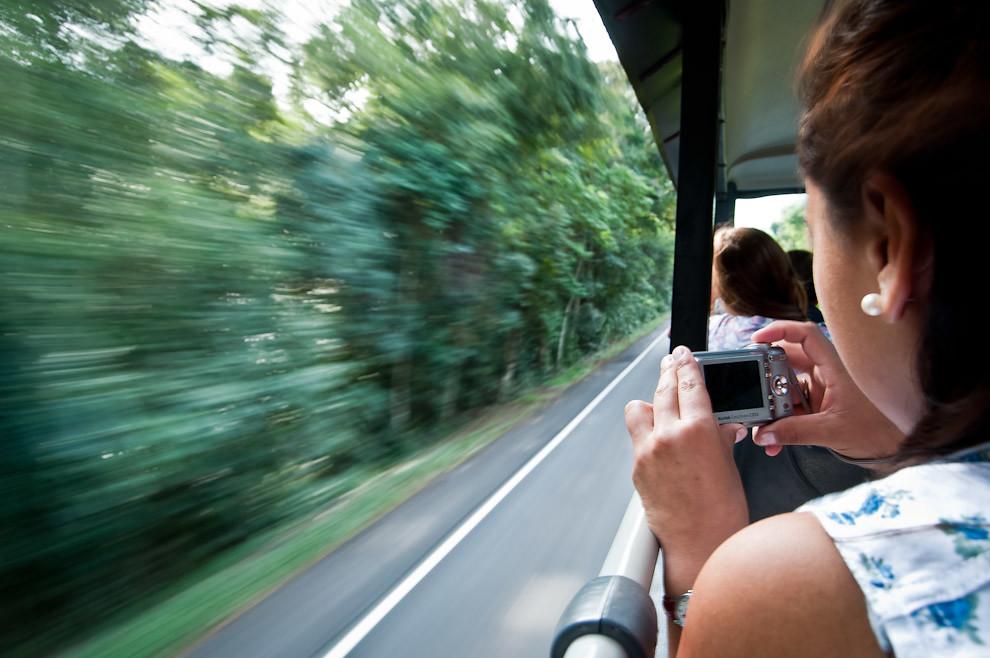 Una señorita toma unas fotografías mientras es transportada hacia las cataratas de Iguazú en el vehículo colectivo diseñado especialmente para que turistas puedan disfrutar del paisaje desde los asientos altos, el jueves 5 de Abril en horas de la mañana. (Elton Núñez)