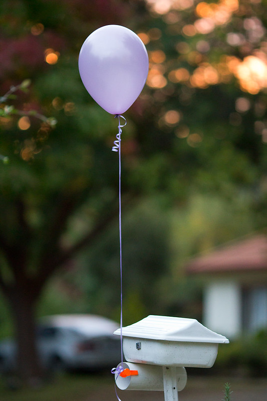 Canberra wedding - balloon