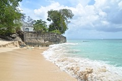 Barbados-2MY_2907
