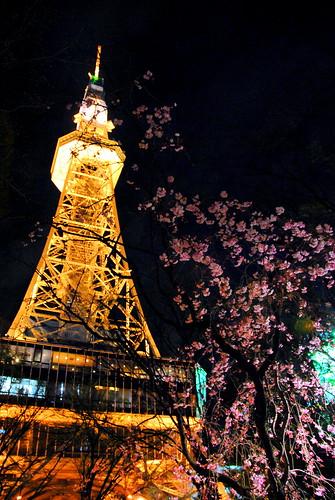 Sakae Spring 006r