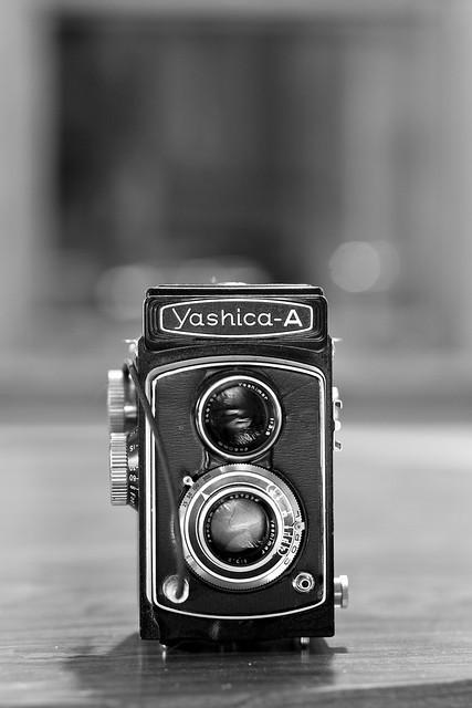 262/365 - Yashica-A