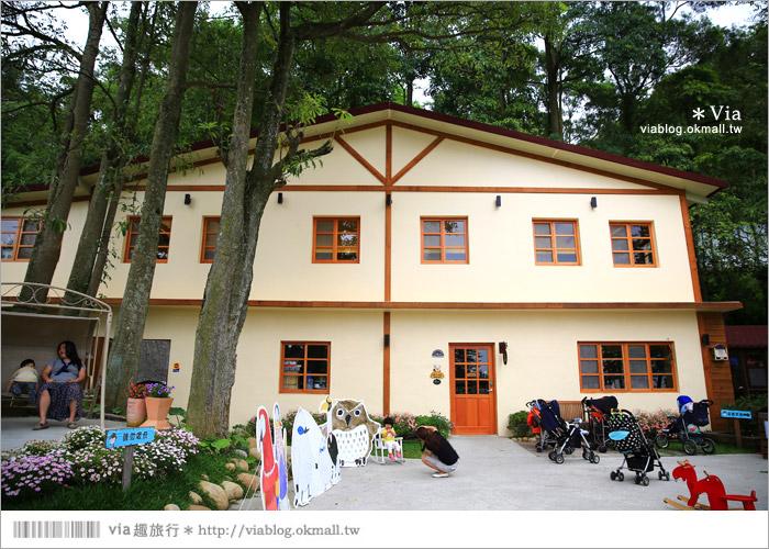 【新竹景點推薦】森林鳥花園~親子旅遊的好去處!在森林裡鳥兒與孩子們的樂園14