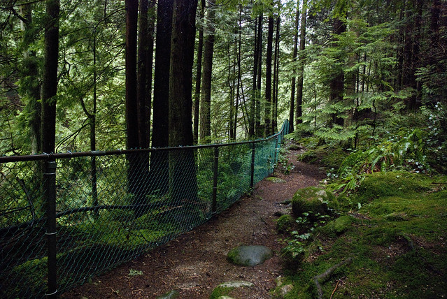 Lynn Canyon Park Fence