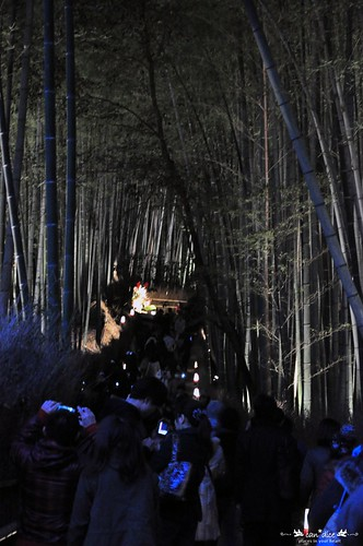 Arashiyama 嵐山 - 12