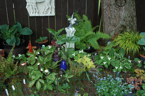 Trilliums Arisaema and ferns