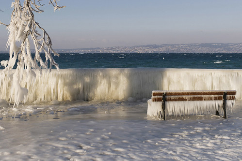 Icy Shores on Lake Geneva