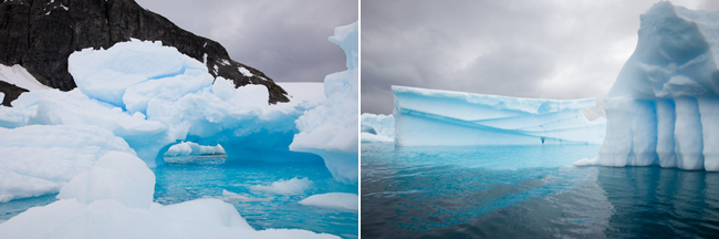 antarctica-blog-60