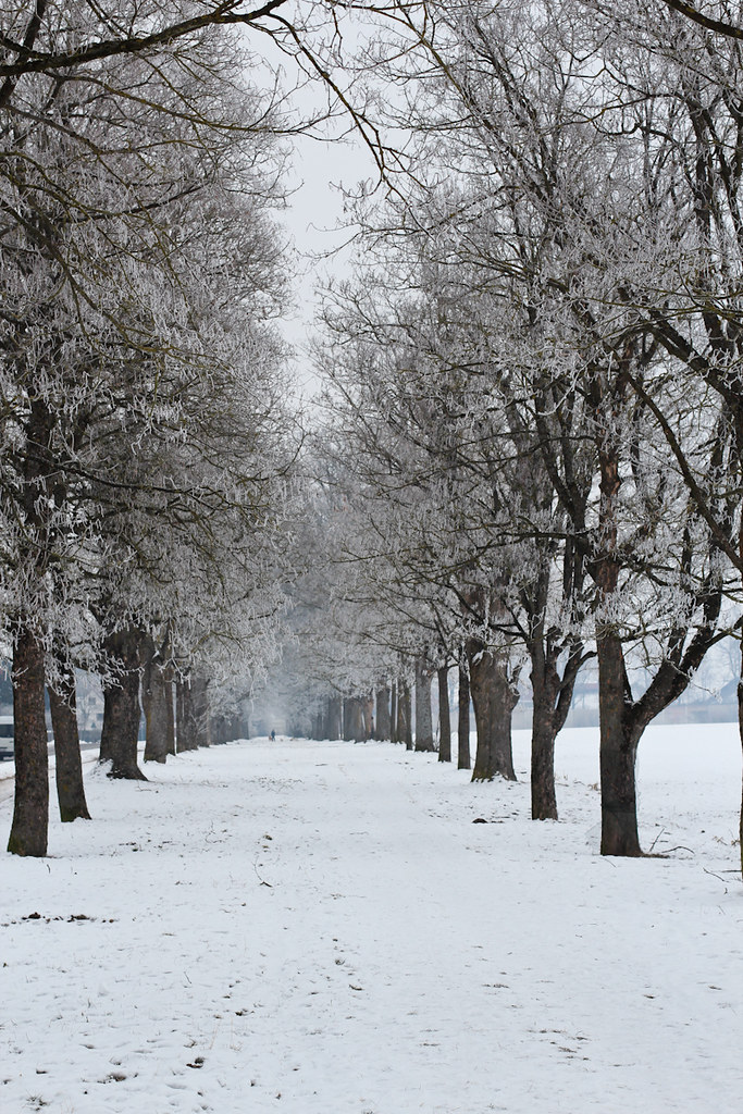 Wintergang